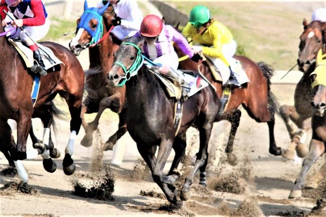 スポーツと歯の話⑨ 馬の走りも歯の健康が影響する?